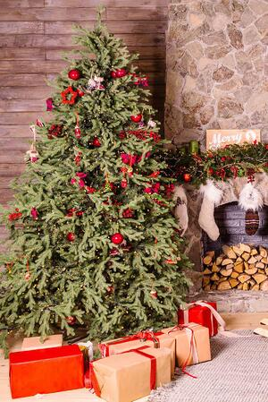 christmas tree personal insurance home insurance claims