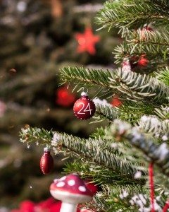 christmas-bauble-1016680_1280