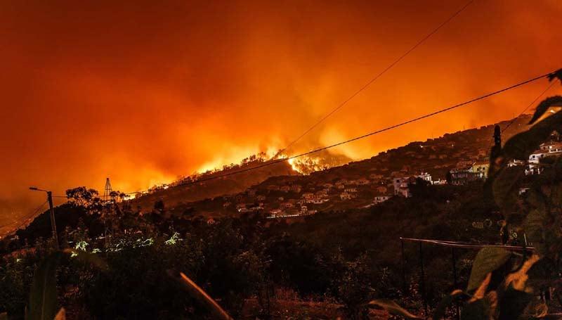 Wildfire homeowners insurance